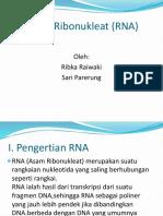 PPT RNA 1