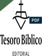 100 ilustraciones sobre la historia de la Iglesia.epub