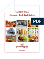 Feasibility Study-Consumer Pack Fruit Juices.pdf