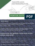 Ponto Gatilho