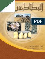 pomme de terre arabe