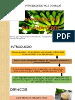 Biomassa de Banana Verde BBV