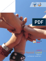 Tema 8-1 La Pastoral Juvenil Es