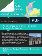 Mecanismos y Garantías Para La Protección de los derechos constitucionales