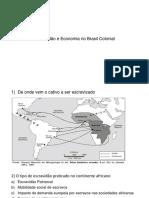 Escravidão No Brasil Colonial Regência Luiz Augusto