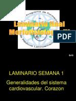 Laminario Final IV(1) [Reparado]