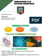 El Ribosoma y La Traduccion Genetica