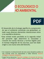 2) Semana 2 - Consideraciones Generales Sobre El Derecho Ambiental (1)