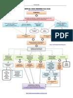 Esquema Proceso civil. Ordinario.pdf