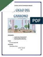 Informe Biologia Ciclo Del Carbono
