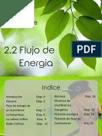2.2 Flujo de Energia