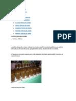 GASTRONOMÍA DE JUNÍN.docx