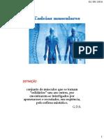 Cadeias Musculares e Rpg