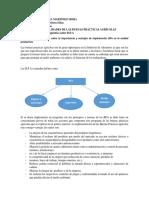 INFORME Y DIAGNOSTICO SOBRE B.P.A.docx