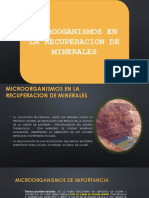 recuperacion de minerales atravez de micoorganismos.ppt