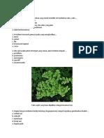 Contoh Soal Bab Plantae
