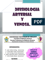 Histofisiologia Arterial y Venosa - GRUPO 9