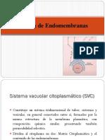 2- SVC_09-10-19