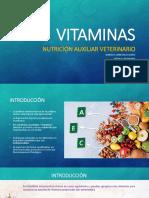 Vitaminas.pptx