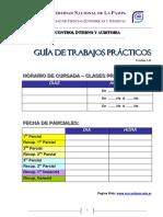 Guia_practica_control_interno_y_auditoria_V.3.11.pdf