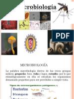 BACTERIO_PRIMERA_Correccion.pptx