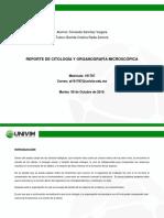 citologia y organografía