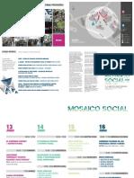 Mosaico Social-Programa Provisório
