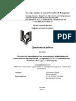 buhatkina_dv_eiu_2014.pdf