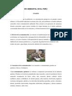 La Contaminación Ambiental en El Perú