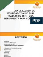 PRESENTACION SG-SST POSITIVA 14 de agosto 2013.pdf