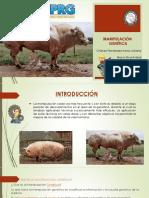 genetica-3.pptx