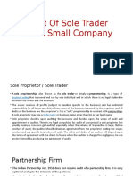 Audit of sole trader and a small company.pptx