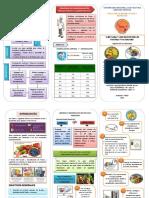 Triptico Limpieza y Desinf de Verduras Original PDF