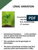 Somaclonal Variation (2)