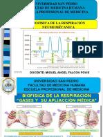 291316047 Biofisica Mecanica Respiratoria i