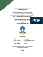 LAPORAN_PEMANTAPAN_PROFESIONAL.doc