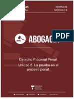 Procesal Penal. Unidad 8. Uncaus