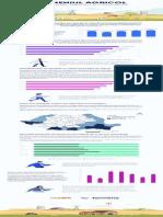 infografic Termene