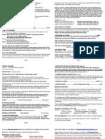 Bulletin 11-21-10