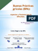 Aspectos y Factores Que Dificultan BPAs