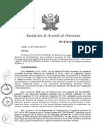 2017_APN PDP Resolucion de Directorio