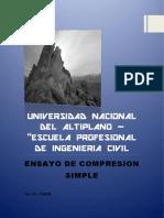 informecompresionsimpleparascdocx-170109043538.pdf