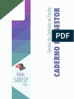 CADERNO DO GESTOR.pdf