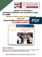 FormatoSumandoAccionesFrenteCambioClimaMEX