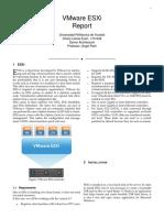 Vmware Esxi Report