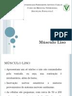Aula 3 - Músculo Liso
