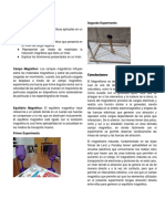 MAGNETISMO cartel.docx