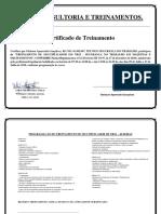 Certificado Treinamento Nr12 Gleisson