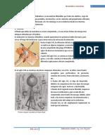Manual Neumática y Electroneumática