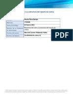 Elemento y estructura de reporte de costos
